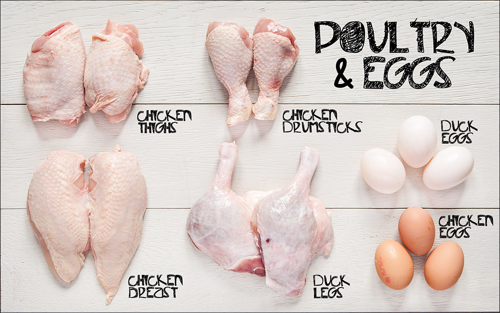 Poultry and Eggs Book Chapter