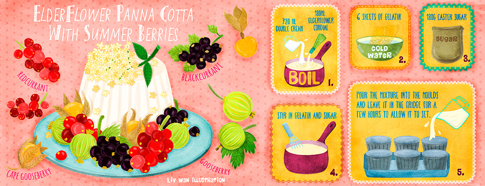 illustrated cookbook